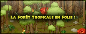 slider_rainforest_fr